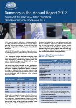 Summary of the Annual Report 2013