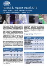 Summary of the Annual Report 2013 - FR
