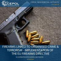 Firearms linked to organised crime and terrorism - implementation of the EU Firearms Directive