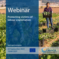 Webinar 63/2021: Protecting victims of labour exploitation